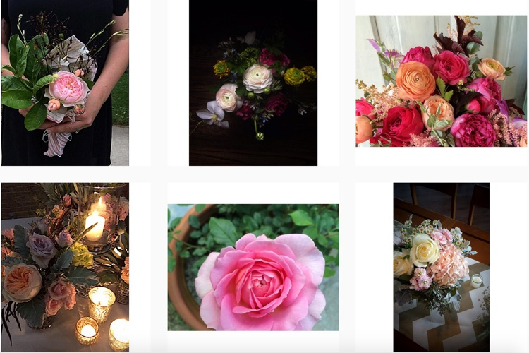 Instagram of Chicago Wedding Florist Fleur